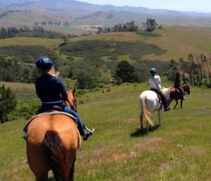Hearst horseback